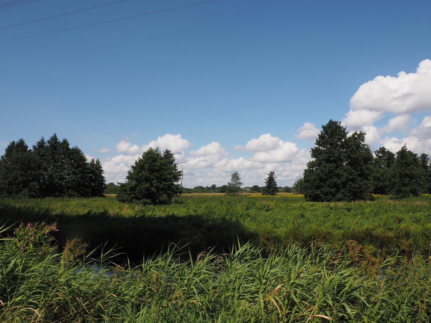 Ist die Entwässerung des unteren Teils des Falkengrabens Privatsache und sollen die Unteranlieger für die Entwässerung der Oberanlieger bezahlen?