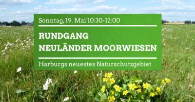 Rundgang Neuländer Moorwiesen @ Fünfhausener Landweg