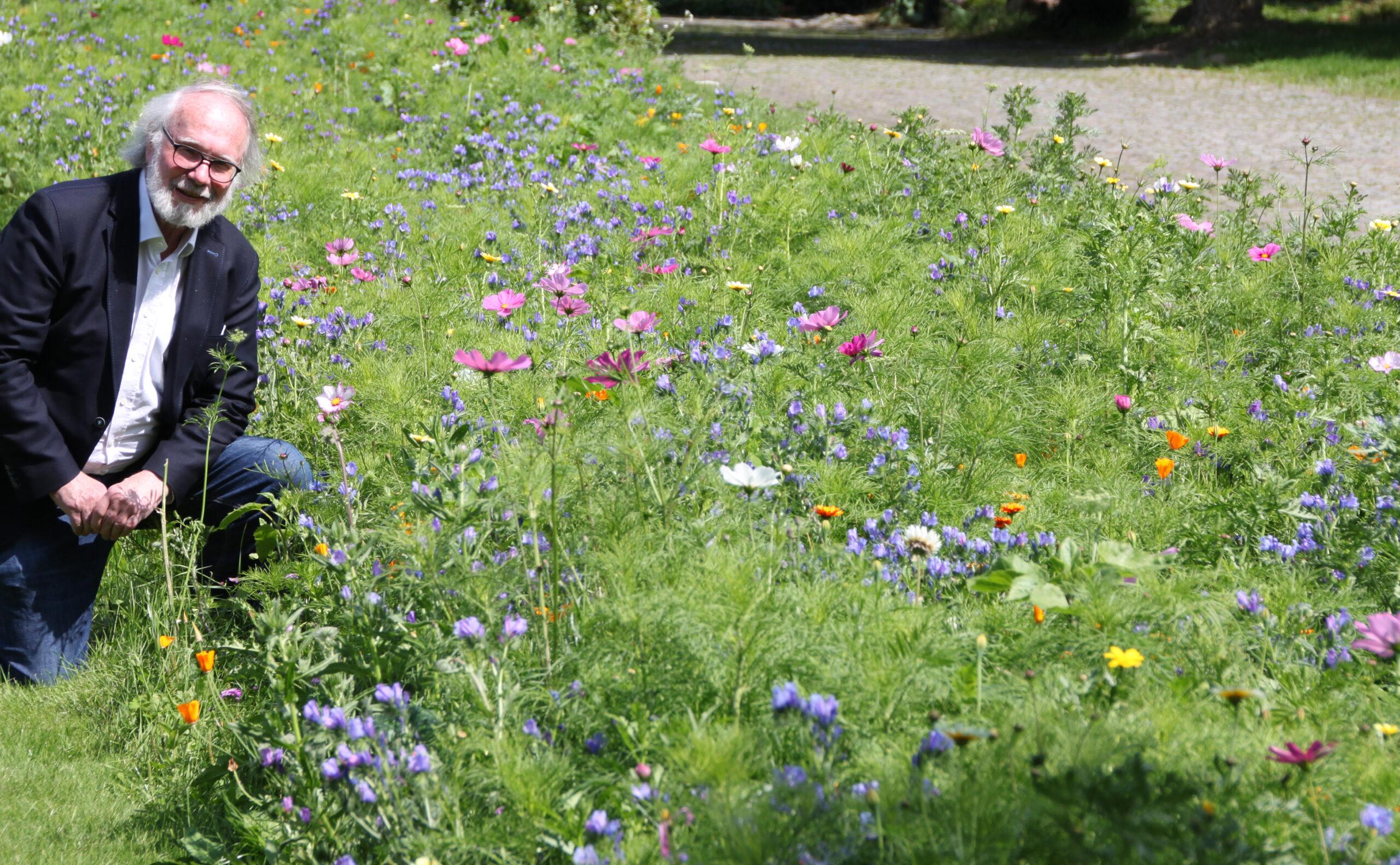 Mehr Blühflächen für Harburg!