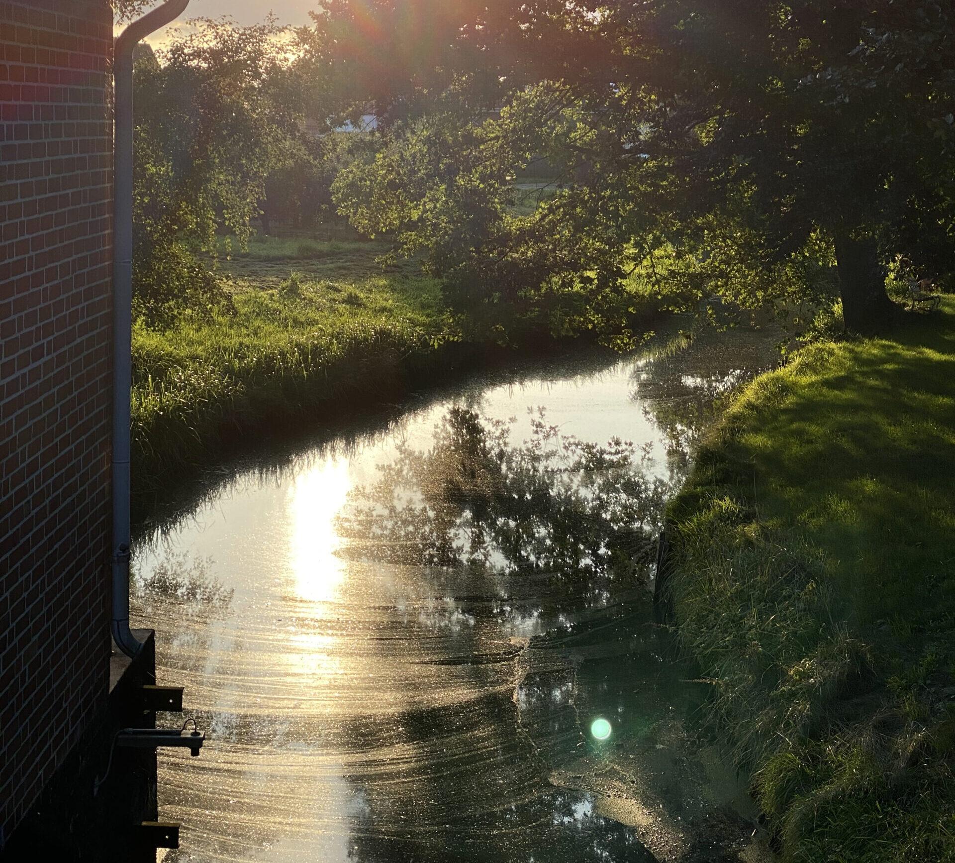 Wie gut ist der Raum Süderelbe vor Binnenhochwasser geschützt?